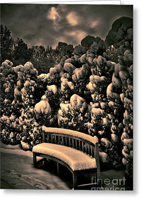 Photographers Greensboro Greeting Cards - Under a Snowy Moon in Greensboro Greeting Card by Dan Carmichael