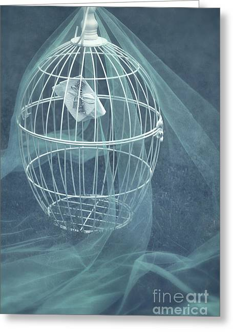 Wire Mixed Media Greeting Cards - Under a Veil  Greeting Card by Svetlana Sewell