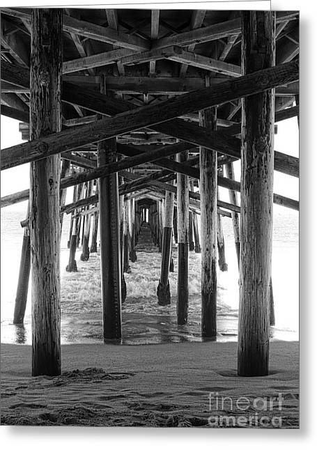 Balboa Greeting Cards - Under Balboa Pier in Newport Beach Greeting Card by Ana V  Ramirez