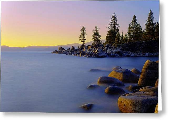 Pine Tree Photographs Greeting Cards - Under Clear Skies Greeting Card by Chad Dutson