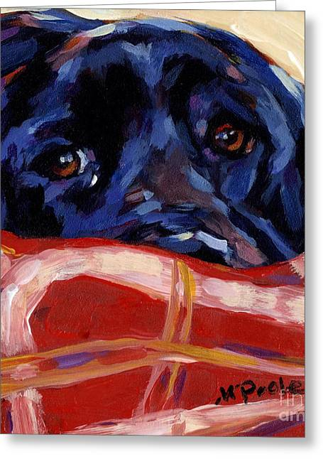 Labrador Retrievers Greeting Cards - Under Cover Greeting Card by Molly Poole
