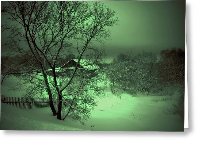 Snowy Day Greeting Cards - Under Green Moon Greeting Card by Jenny Rainbow