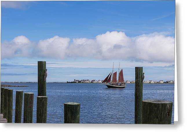 Shallowbag Bay Greeting Cards - Under Sail Greeting Card by Gregg Southard