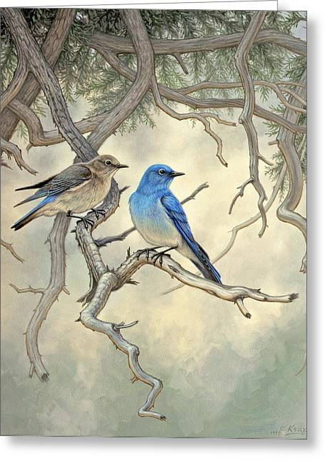 Wildlife Greeting Cards - Under the old Juniper-Mountain Bluebirds Greeting Card by Paul Krapf