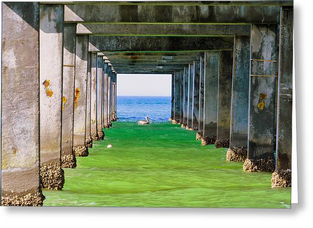New Greeting Cards - Under the pier Greeting Card by Zina Stromberg