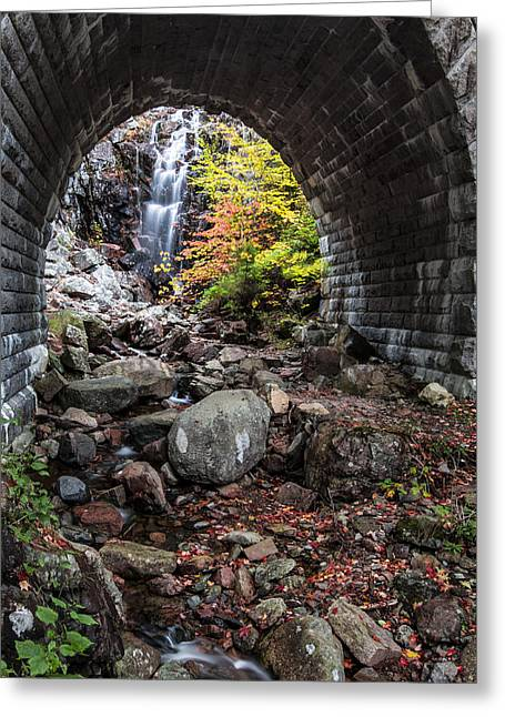 Acadia National Park Photographs Greeting Cards - Under the Road Greeting Card by Jon Glaser