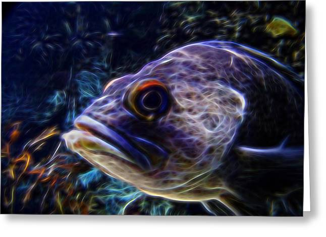 Sea Life Digital Greeting Cards - Under the Sea Digital Art Greeting Card by Ernie Echols