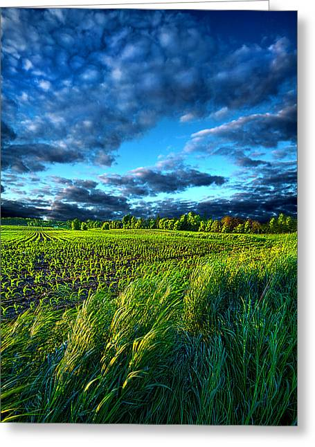 Shadows Greeting Cards - Under The Sun Somewhere Greeting Card by Phil Koch