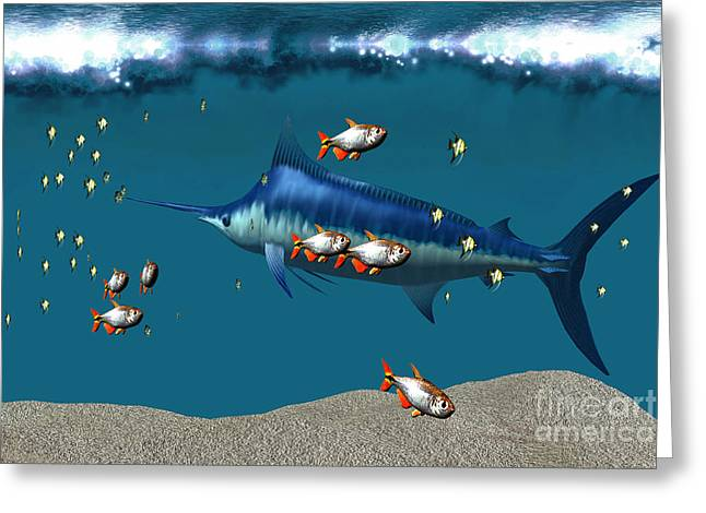 Swordfish Greeting Cards - Under the Surf Greeting Card by Corey Ford