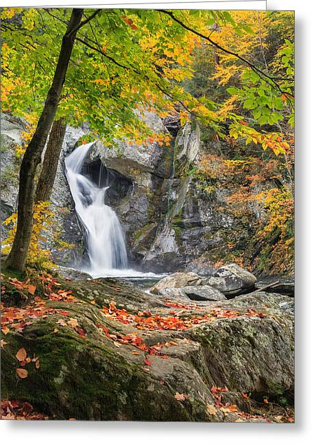 The Berkshires Greeting Cards - Under The Tree Greeting Card by Bill  Wakeley