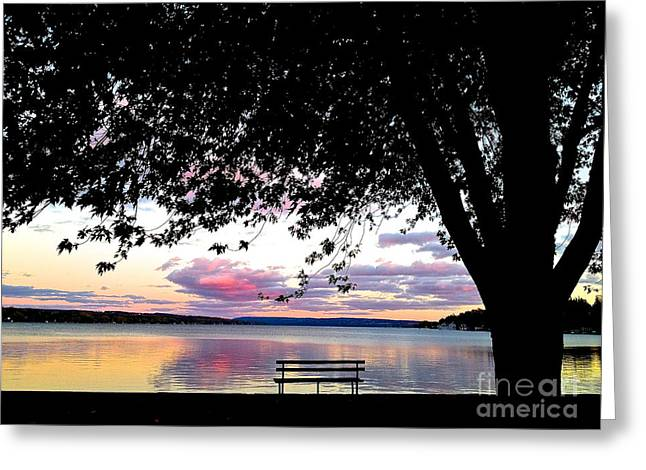 Skaneateles Greeting Cards - Under the Tree Greeting Card by Margie Amberge