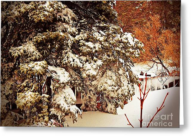 Drifting Snow Greeting Cards - Under the Weight - Blizzard - Snow Storm Greeting Card by Barbara Griffin
