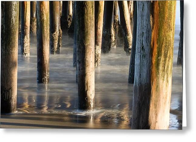 Dayne Greeting Cards - Under The Wharf Greeting Card by Dayne Reast