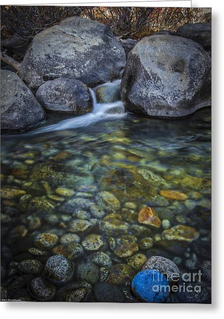 Fly Fishing Pro Greeting Cards - Undercurrents Greeting Card by Mitch Shindelbower