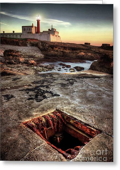 Underground Peek Greeting Card by Carlos Caetano