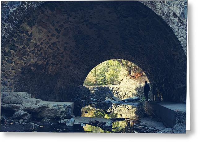 Stone Bridge Greeting Cards - Underneath It All Greeting Card by Laurie Search