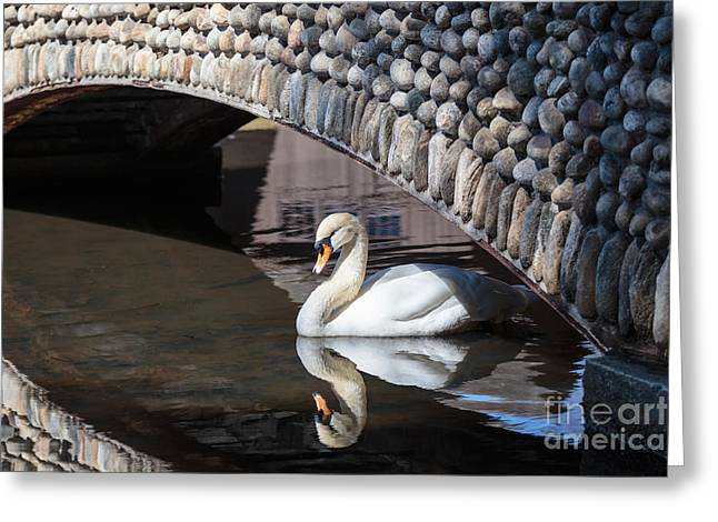 Print Photographs Greeting Cards - Underneath the Arch Greeting Card by Mary Lou Chmura