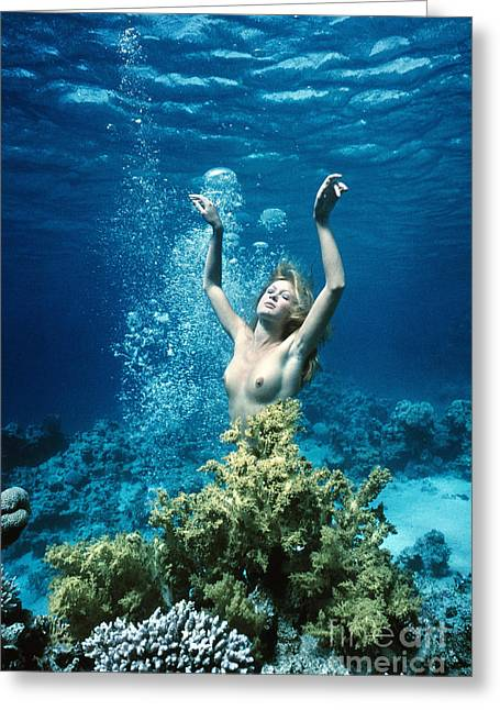 Recently Sold -  - Ocean Photography Greeting Cards - Underwater Nude Mermaid Emerging Greeting Card by Derek Berwin