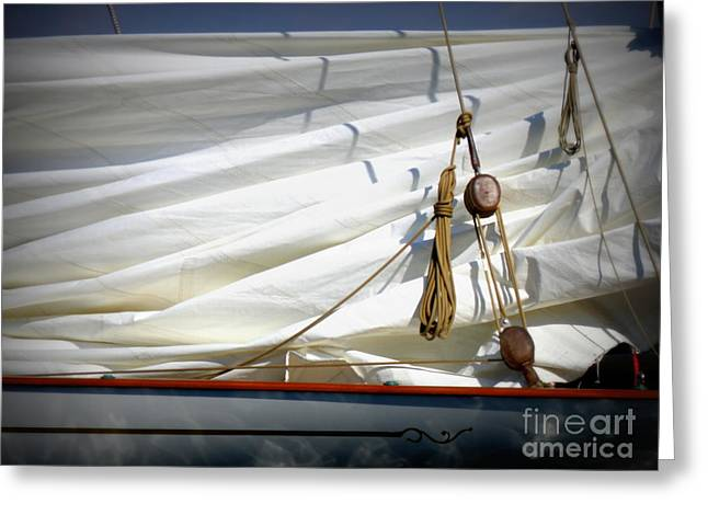 Before The Races Greeting Cards - Unfurled Sail Greeting Card by Lainie Wrightson