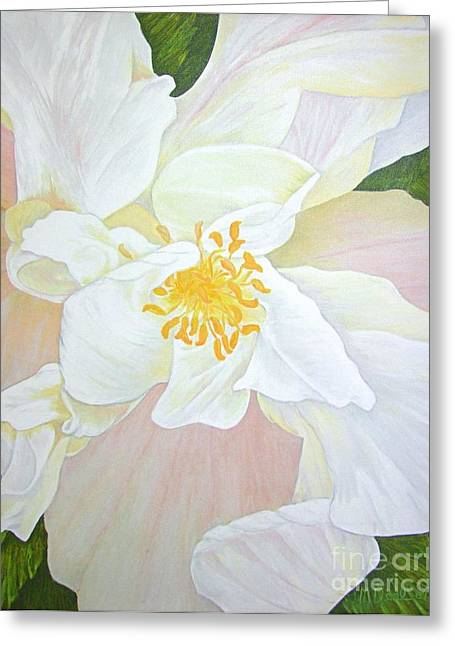 Mary Deal Greeting Cards - Unfurling White Hibiscus Greeting Card by Mary Deal
