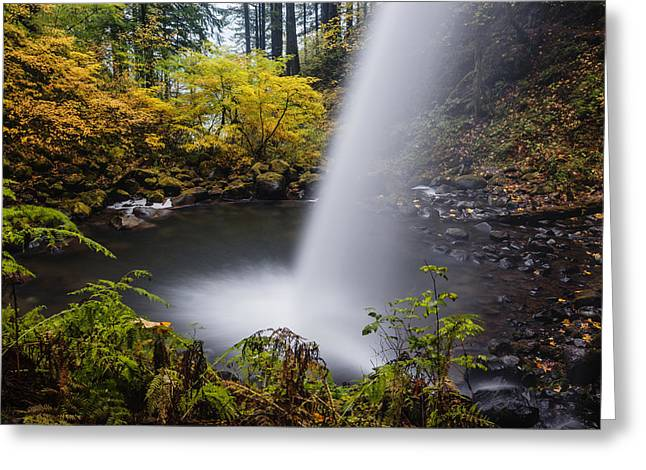 Ponytail Greeting Cards - Unique view of Ponytail falls Greeting Card by Vishwanath Bhat