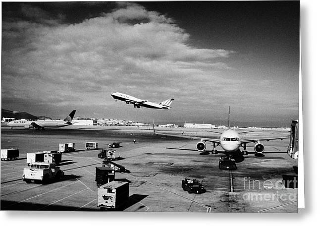 United Airlines 747 Greeting Cards - united airlines aircraft taking off taxiing and on stand at the San Francisco International Airport  Greeting Card by Joe Fox