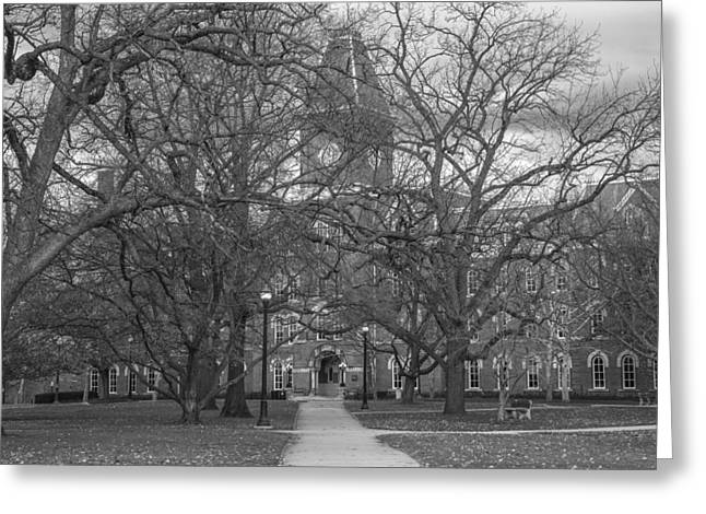The Ohio State University Greeting Cards - University Hall and Pathway OSU Greeting Card by John McGraw