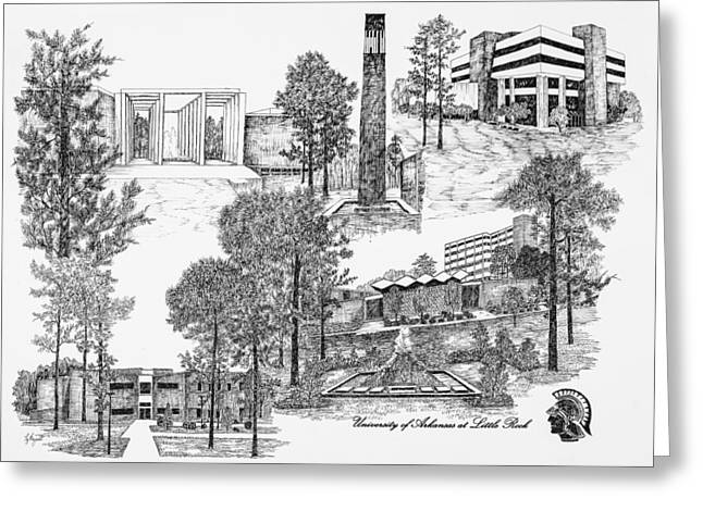 University Of Arkansas Greeting Cards - University of Arkansas Greeting Card by Jessica  Bryant