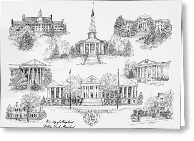 University Of Maryland Greeting Card by Liz  Bryant