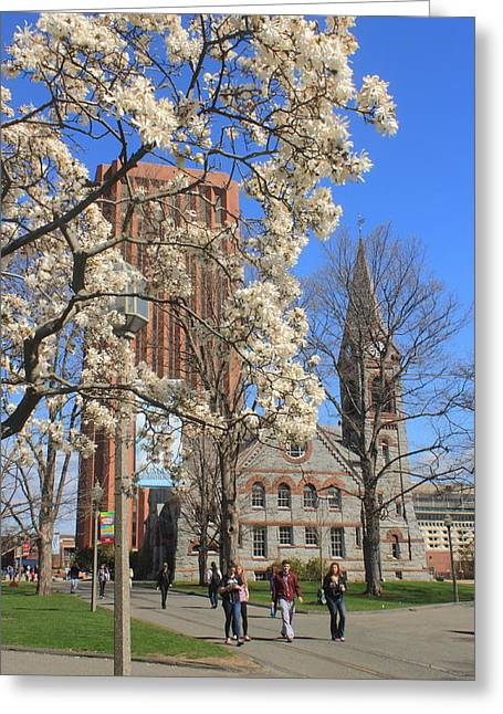 Umass Greeting Cards - University of Massachusetts Old Chapel and Library in Spring Greeting Card by John Burk