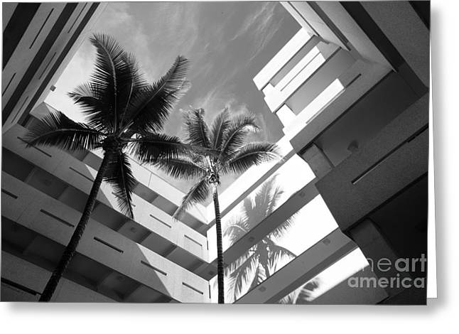 University Of Miami Greeting Cards - University of Miami Business Administration Courtyard Greeting Card by University Icons