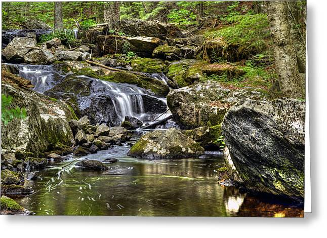 Unnamed Falls At Upper Spec Pond Greeting Card by Geoffrey Coelho
