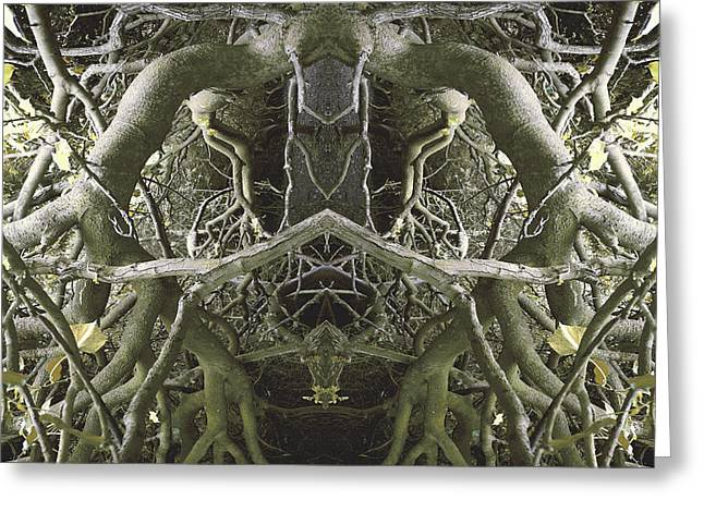 Abstract Nature Greeting Cards - Unnatural 41 Greeting Card by Giovanni Cafagna