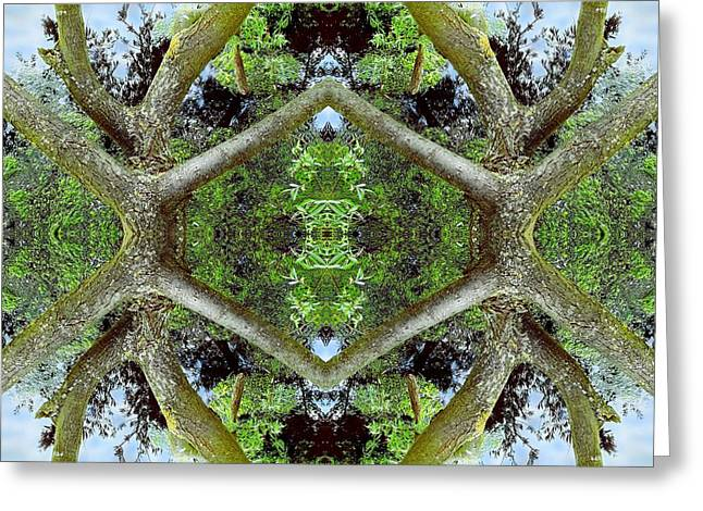 Organic Greeting Cards - Unnatural 65.2 Greeting Card by Giovanni Cafagna