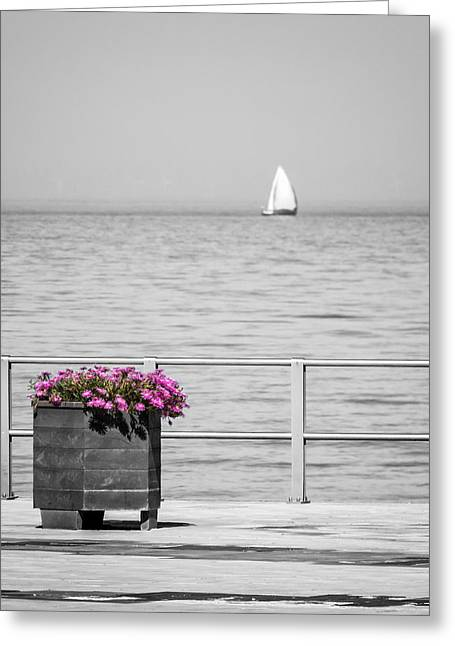 Pot Boat Greeting Cards - Unnoticed Greeting Card by Wim Lanclus
