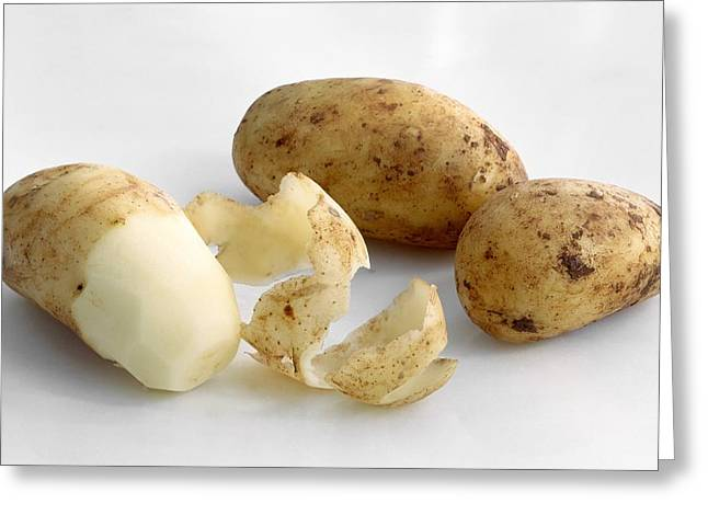 Starchy Greeting Cards - Unpeeled and peeled potatoes Greeting Card by Science Photo Library