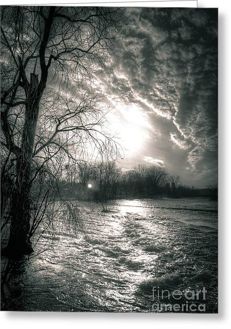 Environmental Center Greeting Cards - Unsettling Waters At 1000 Islands Greeting Card by Shutter Happens Photography