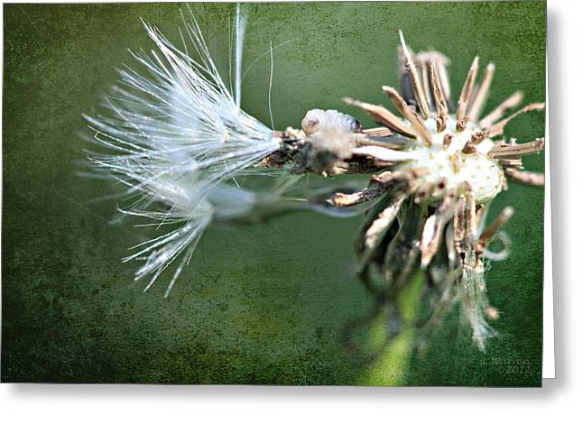 Green Blade Of Grass Greeting Cards - Unstoppable Decay Greeting Card by Lyndsey Warren