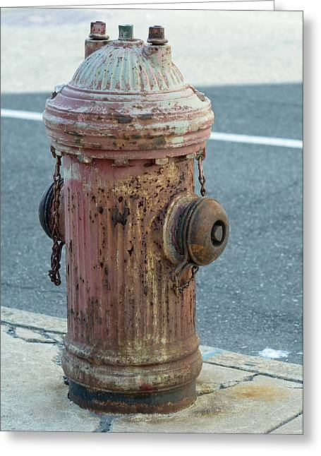 Hydrant Greeting Cards - Unsung Hero Greeting Card by Lisa  Phillips