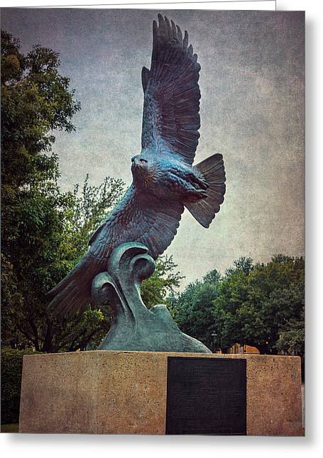 Unt Eagle In High Places Greeting Card by Joan Carroll