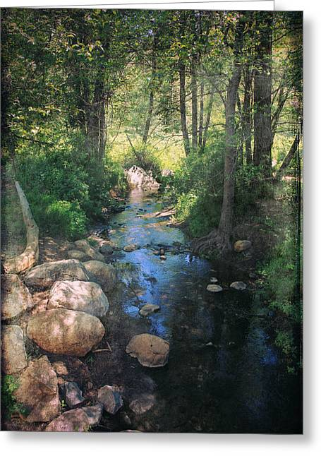 Stream Digital Art Greeting Cards - Until I Loved You Greeting Card by Laurie Search