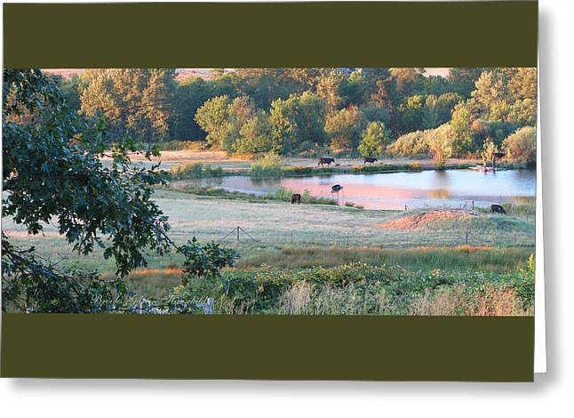 Pastureland Greeting Cards - Until the Cows Come Home 2 Greeting Card by Brooks Garten Hauschild