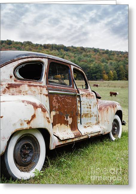 Rusted Cars Greeting Cards - Until the cows come home Greeting Card by Edward Fielding