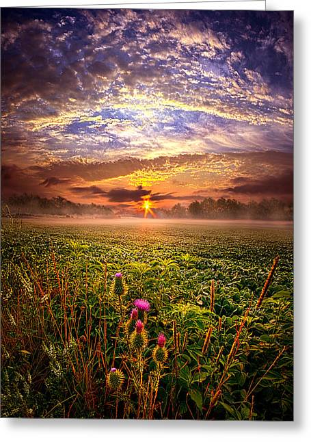 Geographic Greeting Cards - Until We Meet Again Greeting Card by Phil Koch
