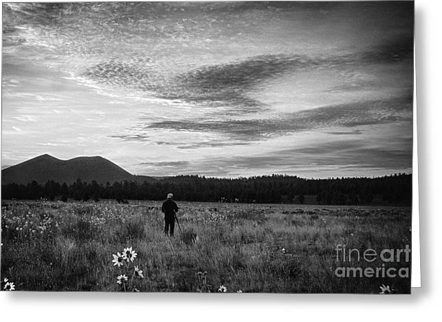 Beautiful Greeting Cards - Untitled 407 Greeting Card by Arne Hansen