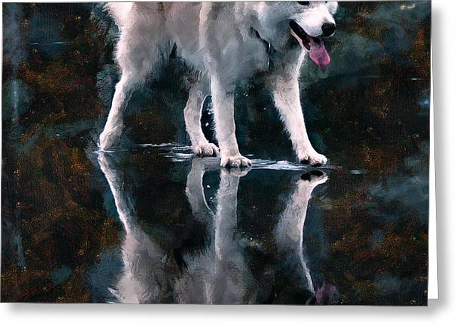 Husky Greeting Cards - Unusual Feeling Greeting Card by Yury Malkov