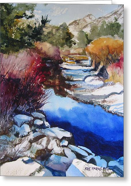 Runoff Greeting Cards - Up a Creek Greeting Card by Kris Parins