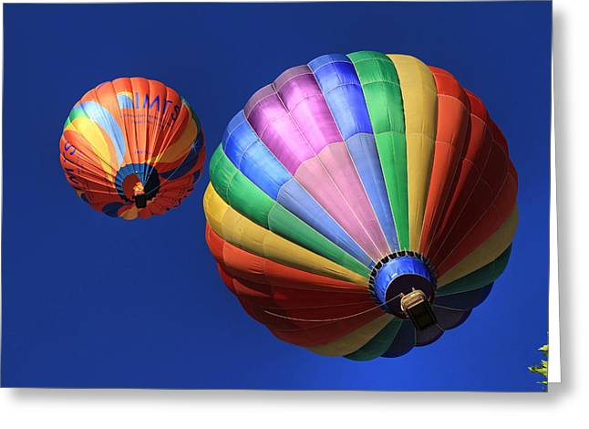 Hot Air Balloon Ride Greeting Cards - Up and Away in Reno 2 Greeting Card by Donna Kennedy