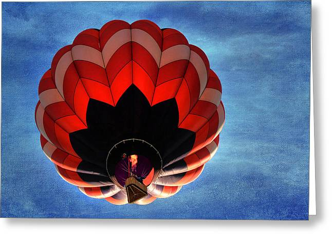 Hot Air Balloon Ride Greeting Cards - Up and Away in Reno Greeting Card by Donna Kennedy