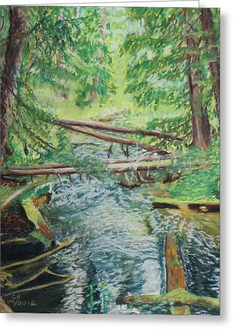 National Pastels Greeting Cards - Up Ross Creek Greeting Card by Cindy  Hierl